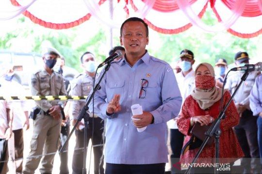 Menteri Edhy sebut hapus larangan cantrang bisa serap tenaga kerja