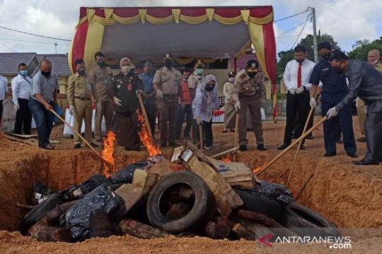 BKP Pangkalpinang musnahkan 3,8 ton daging beku asal Australia