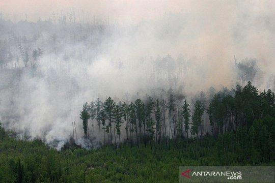 EU: Suhu Siberia capai rekor tertinggi pada Juni, picu kebakaran