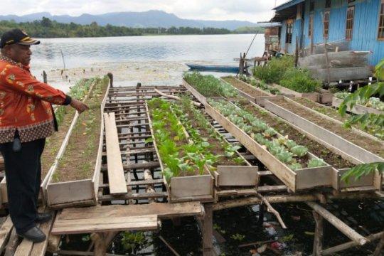 Kementan: Potensi bahan pangan lokal Indonesia sangat besar