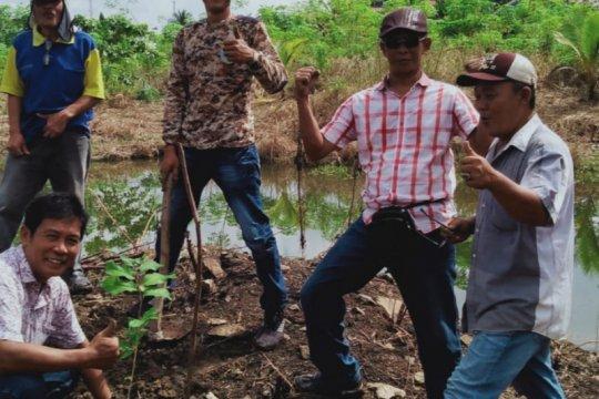 Komunitas Pohon Indonesia OKU tanam 16 ribu bibit pohon buah