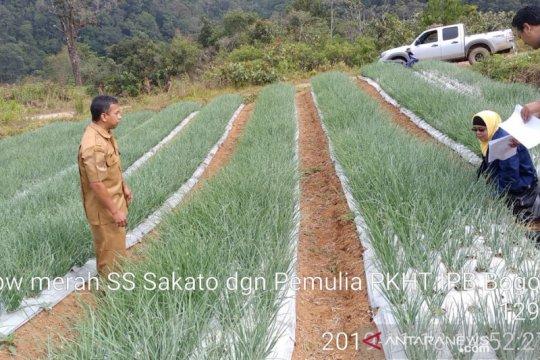 Jadi prioritas nasional komersialisasi bawang merah varietas baru IPB