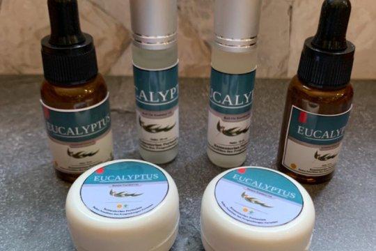 Kemenkes-Kementan diminta sinergi garap produk eucalyptus