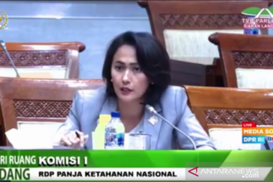 Anggota DPR: Indonesia butuh UU primer terkait perlindungan data