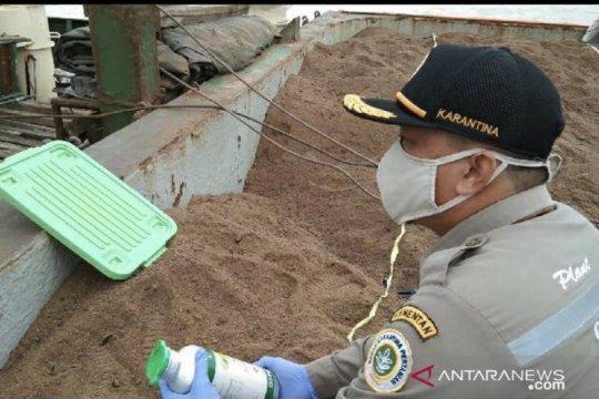 2.200 ton bungkil sawit Kaltim siap dikirim ke Vietnam