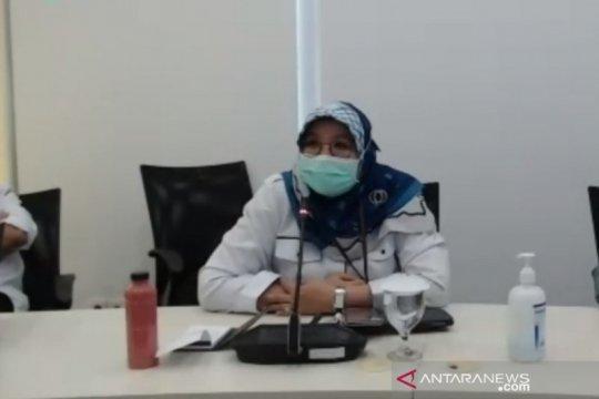 Kemenkes tegaskan African swine fever berbeda dengan flu babi