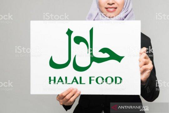 Sertifikasi halal sebaiknya untuk dorong pertumbuhan ekonomi