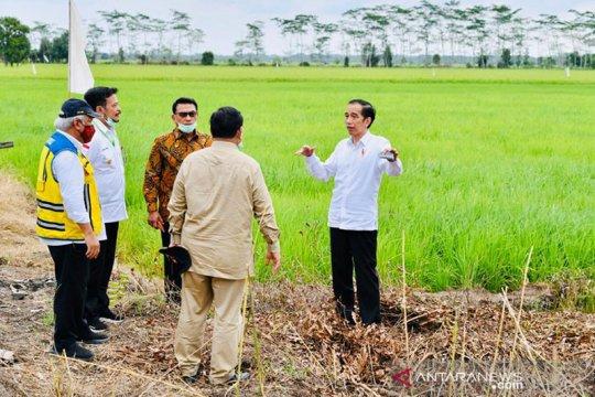 Presiden sebut perlu lumbung pangan baru antisipasi krisis pangan