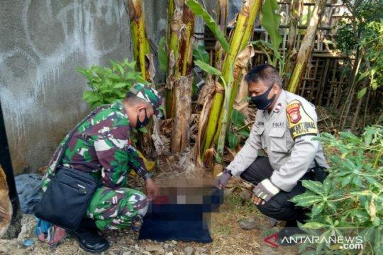 Mayat bayi perempuan ditemukan petugas PPSU di Kapuk