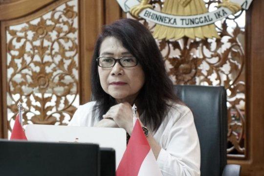 Pemerintah pastikan usut tuntas insiden penembakan di Distrik Hitadipa
