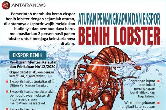 Aturan penangkapan dan ekspor benih lobster