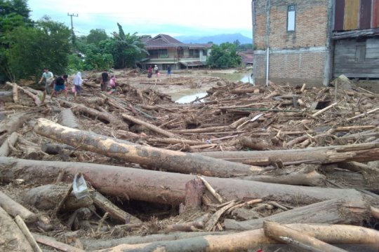 Banjir bandang di Luwu Utara akibatkan 223 rumah rusak berat