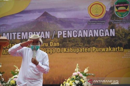 Dedi Mulyadi inisiasi dibukanya persawahan baru seluas ribuan hektare