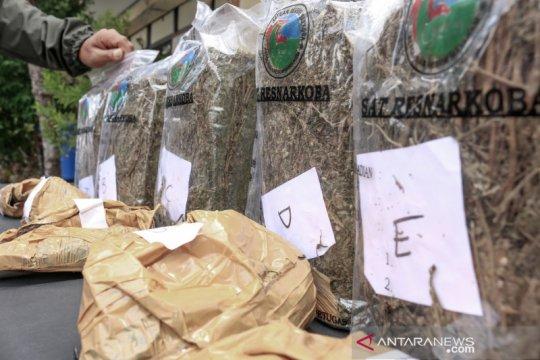 Kalapas Mataram akui kecolongan terkait kasus ganja 6,68 kilogram