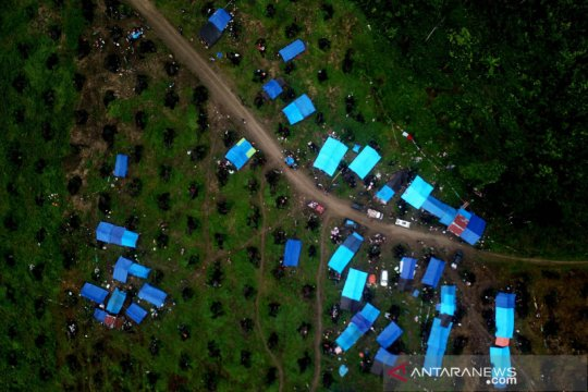 Pengungsi banjir bandang di Luwu Utara