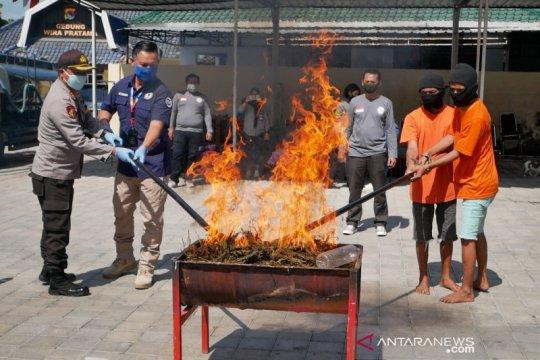 Polisi musnahkan sabu dan ganja senilai Rp5,89 miliar
