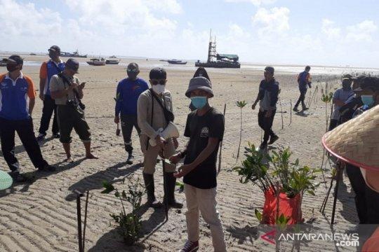 5.000 bibit bakau ditanam di Pantai Bhaskara Bhakti