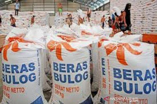 Bulog Sumut: Pembelian beras petani capai 171 persen dari target