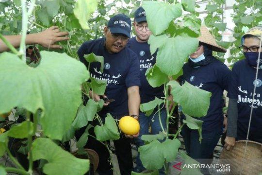 Kagum teknologi pertanian IPB, Gus Jazil ajak milenial turun bertani