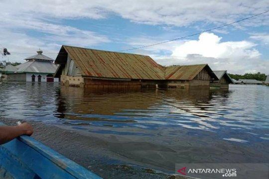 BPBD: Banjir Konawe meluas ke 50 desa, 3.114 jiwa mengungsi