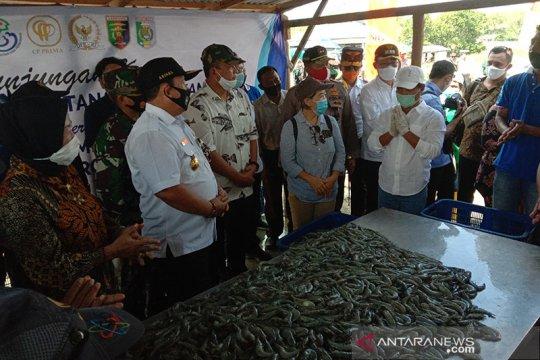 Menteri Edhy minta budi daya udang di Lampung Timur dikelola intensif