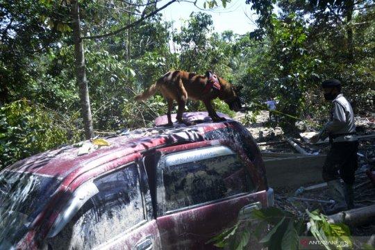 Pencarian korban banjir dengan anjing pelacak
