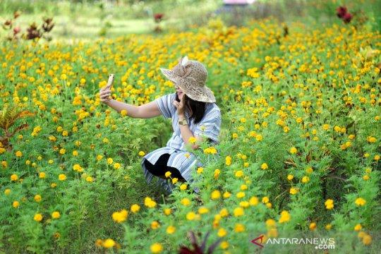 Taman bunga  Holland Park di Gorontalo kembali dibuka