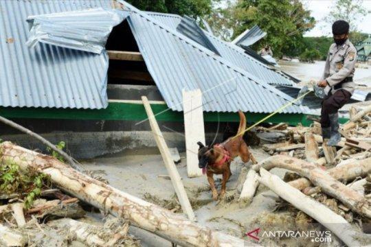 10 korban banjir bandang Luwu Utara belum ditemukan, sebut Basarnas