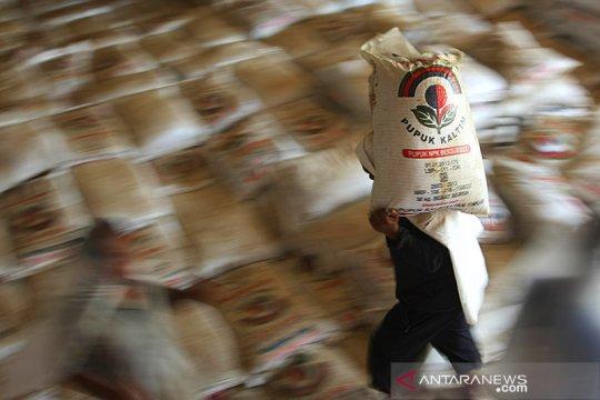 Pupuk Kaltim realisasikan penyaluran 119.718 ton urea subsidi di NTB