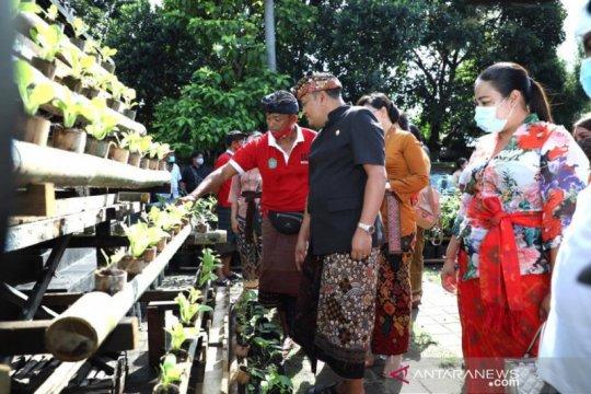 Bupati Gianyar dorong usaha pertanian di lahan rumah