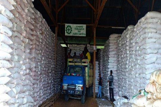 Pupuk Kaltim salurkan 581,20 ton pupuk bersubsidi ke Papua Barat