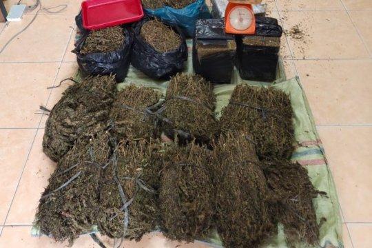 Polisi gagalkan penyelundupan ganja seberat 36 kilogram