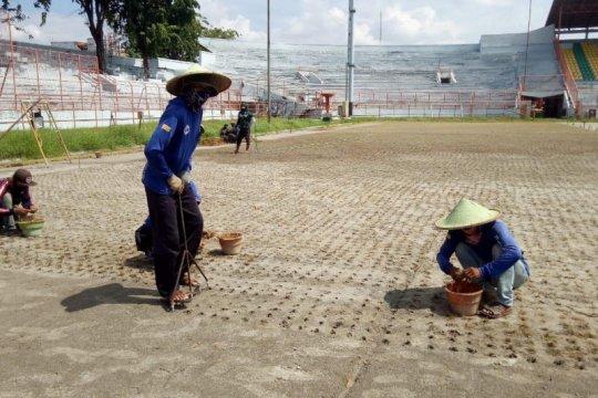 Rumput Stadion Gelora 10 November Surabaya sesuai standar FIFA
