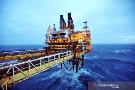 Minyak naik dipicu penurunan tajam persediaan minyak mentah AS