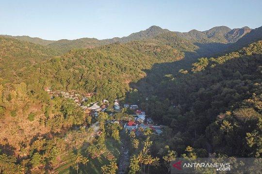 Legislator sebut RUU Cipta Kerja lindungi masyarakat hutan