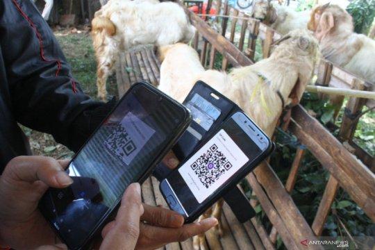 Penjual hewan kurban terapkan pembayaran daring