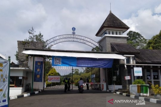 Pengunjung Kebun Raya Cibodas meningkat sejak kembali dibuka