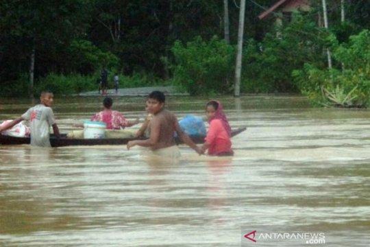 Ribuan rumah di 38 desa di Aceh Barat terendam banjir