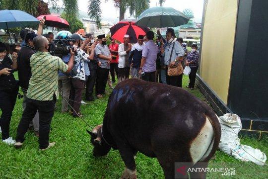 Masjid Raya Al-Fatah Ambon terima hewan kurban dari DPRD Maluku