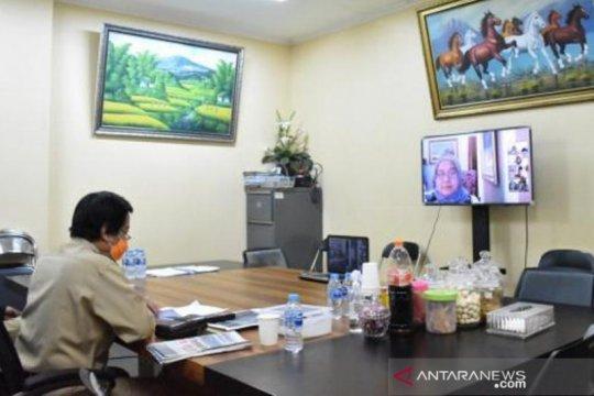 Babel terima sapi kurban Presiden Jokowi seberat 1,57 ton