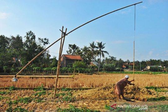 BMKG prakirakan kemarau di Jateng selatan berlangsung hingga September