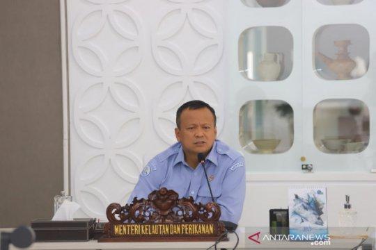 Edhy Prabowo: Saya tidak punya bisnis perikanan