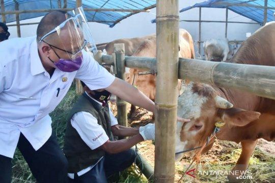 Kabupaten Bogor kerahkan 98 petugas untuk periksa hewan kurban