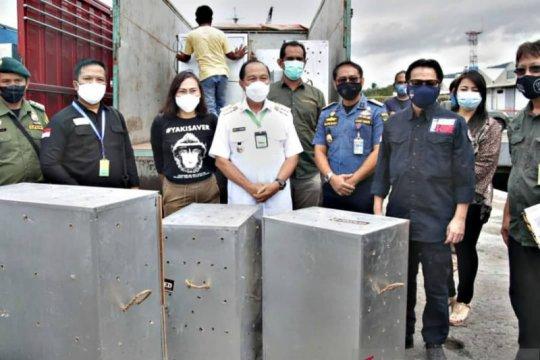 Lomban terima repatriasi 91 satwa endemik Indonesia