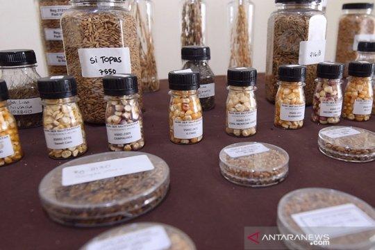 Sumber daya genetik pertanian harus dikembangkan secara berkelanjutan