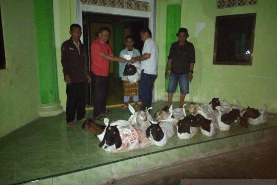 Masjid-mushala di Minahasa Tenggara-Sulut dibantu hewan kurban