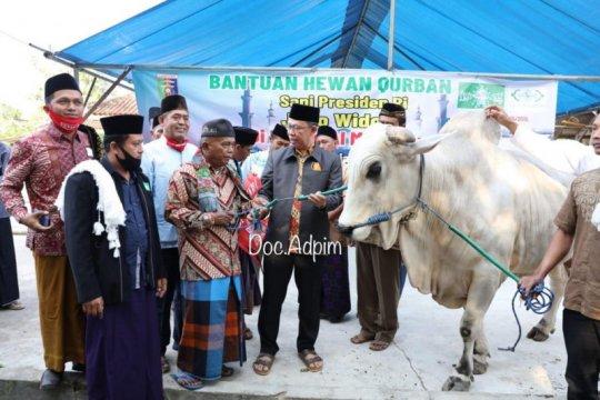 Sapi kurban Presiden Jokowi diserahkan kepada jamaah masjid