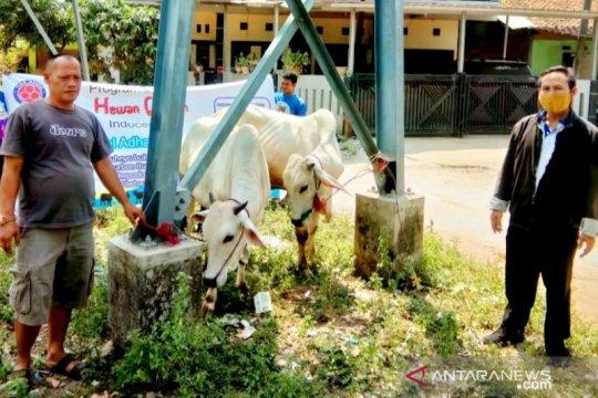 12 desa mitra di Bogor dibantu hewan kurban oleh Indocement