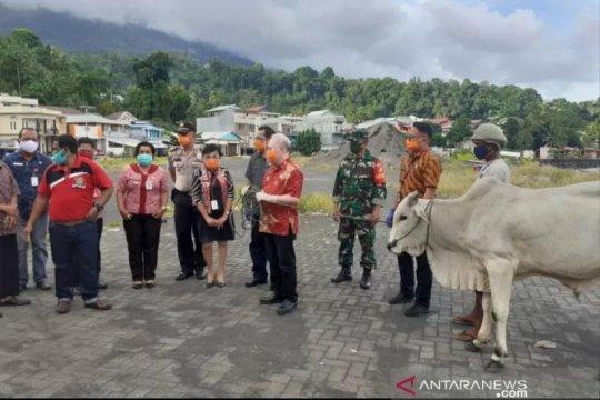 Umat Islam-dhuafa di pulau terluar Sitaro dapat bantuan hewan kurban