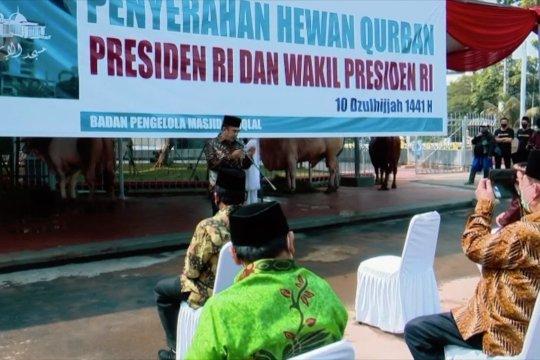 Masjid Istiqlal terima sapi kurban dari Presiden Joko Widodo